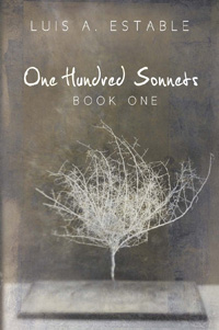 One Hundred Sonnets, Book One(POD)